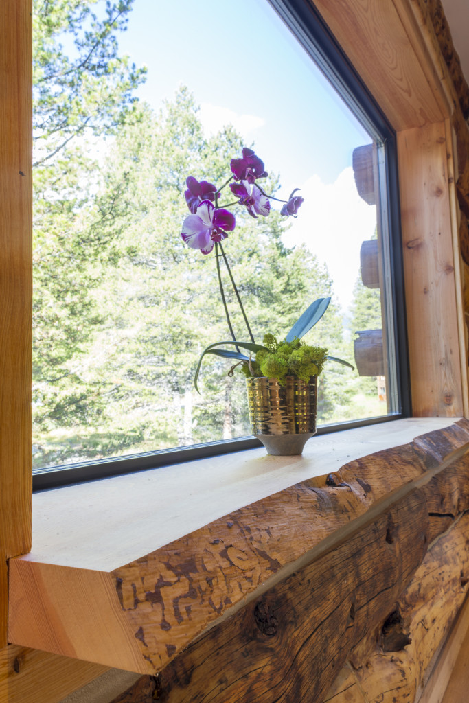 Treehouse window sill